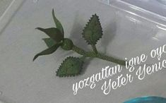 This Pin was discovered by Sel |