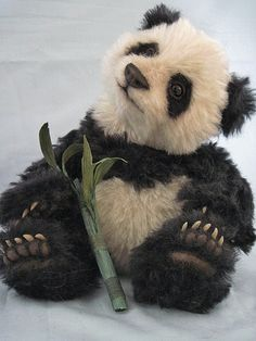 Friendly panda posted by Redlandspoodles.com