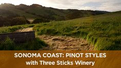Variations in climate and soils make for different wine styles. Don Van Staaveren and Gloria Maroti Frazee compare two Pinots from Sonoma Coast AVA, including one from the Petaluma Gap area in this video.