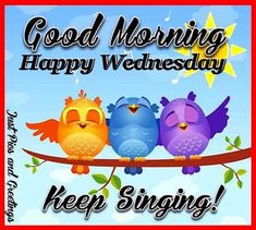 Good morning, happy Wednesday day greeting with owls