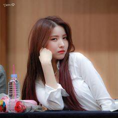 Pop Group, Girl Group, Korean Girl, Asian Girl, Gfriend Sowon, Cloud Dancer, G Friend, Kpop Girls, My Girl