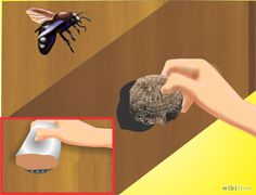 How to Get Rid of Carpenter Bees. Carpenter bees are benign creatures that are mostly harmless to humans, but which can be very damaging to wooden structures. Carpenter bees are so named because they drill into wood to lay their eggs and. Kill Carpenter Bees, Carpenter Bee Trap, Backyard Projects, Outdoor Projects, Outdoor Crafts, Diy Projects, Boring Bees, Getting Rid Of Bees, Bee Traps