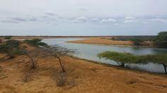 Jacuque Península de Paraguaná
