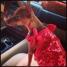Betty's dress!