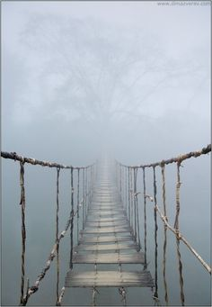 Into the Mist (chasingrainbows)