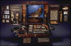 Traveling Museum Box by Ron Pippin - http://www.cultofweird.com/curiosities/traveling-museum-box/