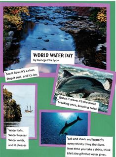 Here's another example of a poetry collage (created at a workshop for teachers in Wichita Falls, TX). This poem is from THE POETRY FRIDAY ANTHOLOGY FOR CELEBRATIONS (edited by Sylvia Vardell & Janet Wong, 2015). Teacher Workshops, Wichita Falls, World Water Day, See It, Collages, Shark, Celebrations, Waterfall, Poems