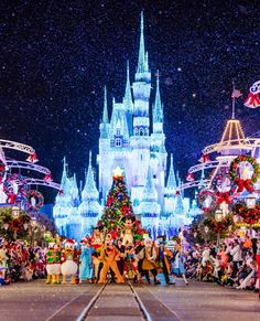 Disney World 2016 Trip Planning Guide - Disney Tourist Blog