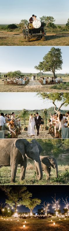 #Wanderlust from Kyly Zakheim and Ryan Rabin's enchanting #wedding in South Africa. Returning to the place of the groom's heritage and their proposal, the couple wed in a rustic ceremony in the open savanna at Londolozi Game Reserve, with the bride looking stunning in a sleek Vera Wang number. Safari chic wedding inspiration. {Facebook: The Wedding Scoop}