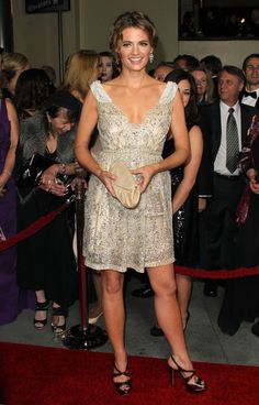 Stana Katic Photos Photos - Actress Stana Karrives at the 64th Annual Directors Guild Of America Awards held at the Grand Ballroom at Hollywood & Highland on January 28, 2012 in Hollywood, California. - 64th Annual Directors Guild Of America Awards - Arrivals