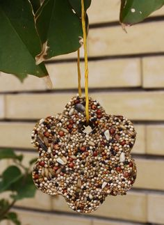 Bird feeder - and it uses no peanut butter, so it's safe for kids who have peanut allergies