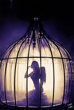 wolfdancer:    Caged Angel