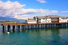Ty Warner Sea Center at Santa Barbara Wharf