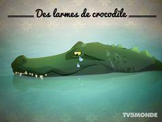 Que signifie cette expression : Verser des larmes de crocodile ? -
