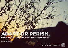 Adapt or Perish.