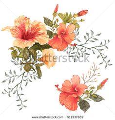 illustration of beautiful flower on white background - buy this illustration on Shutterstock & find other images.