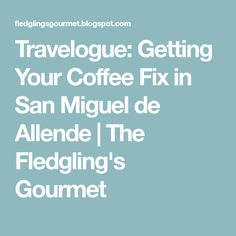 Travelogue: Getting Your Coffee Fix in San Miguel de Allende | The Fledgling's Gourmet