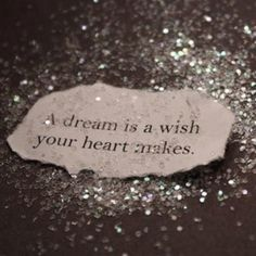 a dream is a wish your heart makes <3