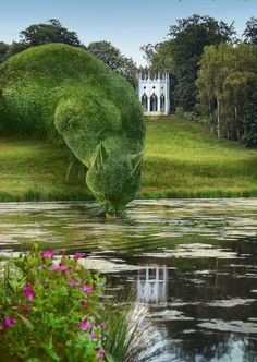 Topiary Cat, done by John Brooker, a retiree aged 75 who lives in Norfolk, UK. Topiary Cat Drinking from a Lake by Rich Saunders Topiary Garden, Garden Art, Dream Garden, Garden Design, Lake Garden, Garden Beds, Cat Drinking, Drinking Water, Parcs