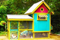 Colorful and happy hen house! Ready to celebrate your backyard flock! #HenHouse www.FreeHenHousePlans.net