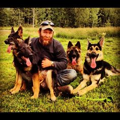 Lower the Bar When Training Your Puppy - Far North Kennel German Shepherd Dogs, German Shepherds, Training Your Puppy, Puppies, Bar, Rock, People, Cubs, Shepherd Dogs