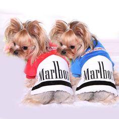 cc67aea09999 93 Best Dog Raincoats images