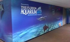 Custom wall wrap for the Touch Tank area at Tropicana Field