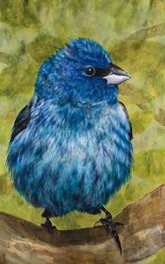 Original Nature Printmaking by Tracy Ostmann Haschke Bird Paintings On Canvas, Canvas Art, Photorealism, Bunting, Impressionism, Blue Bird, Printmaking, Buy Art, Saatchi Art