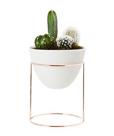 Nest Petite Stand and Vessel - Planters - Garden & Outdoor - Homeware