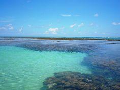 Praia de Tamandaré - Pernambuco