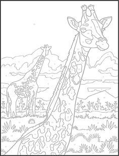 Paint by Number Coloring Books Best Of Giraffe Creative Haven Wildlife Color by Number Coloring Adult Color By Number, Color By Number Printable, Color By Numbers, Paint By Number, Colouring Pics, Coloring Book Pages, Printable Coloring Pages, Coloring Pages For Kids, Coloring Sheets