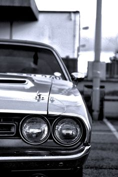 Love this photo!  1970 Dodge Challenger