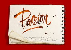 Passion for the Ruling Pen by José Joaquín Domínguez , via Behance