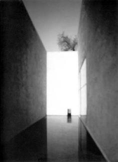 Hiroshi Sugimoto  Galvez House, 2000-2001  gelatin silver print   20 x 24 in./ 51 x 61 cm  3/25