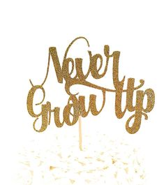 Gold Glitter Never Grow Up Smash Cake Topper 4 x 2