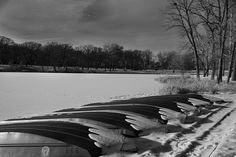 Placed in a Row...a winter shot at Lake Herrick, Illinois..