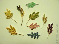 ** Quilling různé tvary listů **