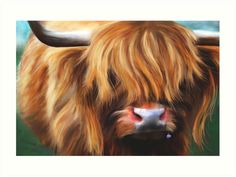 Highland Cow painting by Michelle Wrighton.  Fine Art prints now available from my Redbubble gift shop.