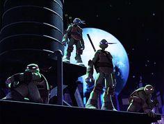 tmnt faces | ... TMNT STEALTH SHELL IN PURSUIT Teenage Mutant Ninja Turtles Raphael