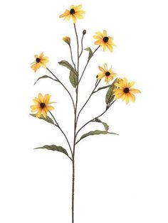 Black-Eyed-Susan Silk Flower Spray in Mustard Yellow - 31 quot; Tall -Fall Black-Eyed-Susan Silk Flower Spray in Mustard Yellow - 31 quot; Fall Flowers, Yellow Flowers, Mustard Flowers, Simple Flowers, Watercolor Flowers, Watercolor Paintings, Drawing Flowers, Black Eyed Susan Flower, Susan Black