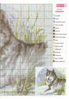 """Gallery.ru / tymannost - Album """"2010_01"""""""