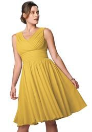 Plus Size Flared Formal Dress image