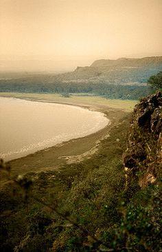 Nakuru rodeado de flamencos -   Lake Nakuru flamingos surrounded (August 2005)    www.vicentemendez.com
