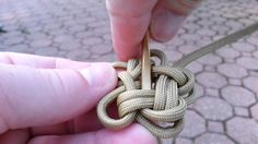 Resultado de imagem para knots