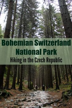 Discover the Bohemian Paradise in the Czech Republic! Tips for hiking in Bohemian Switzerland National Park. How to get there, where stay, trails and the best day trips from Prague to Bohemian Switzerland. via @loveandroad https://www.worldtrip-blog.com