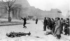 Hungarian freedom fighters on Budapest street near bodies of peolpe they shot during brief partisan struggle for independence from Soviet-backed communist regime. Get premium, high resolution news photos at Getty Images Budapest Guide, Heart Of Europe, Freedom Fighters, Historical Images, Budapest Hungary, Soviet Union, The Real World, Cold War, Eastern Europe