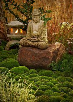 Un jardin zen et idées pour son aménagement à explorer.