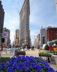 The Flatiron Building by @laurageissend #newyorkcityfeelings #nyc #newyork