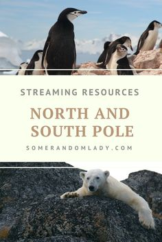 Streaming resources to supplement your North and South Pole Unit. Click through for Playlists, Movies, and Shows about Antarctica and the Arctic Tundra.