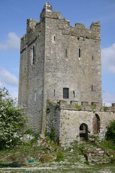 A Castle being restored 2 miles West from Cloghan, Birr, County Offaly Castles In Ireland, Chateaus, Palaces, Tower Bridge, Places To See, Medieval, Restoration, Travel, Beautiful